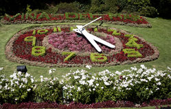 Flower clock in Viña del Mar, Chile Royalty Free Stock Photo