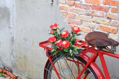 Flower  close up on saddle red bicycle classic vintage Royalty Free Stock Photography
