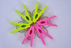 Flower from clothespins. In Thailand,Asia stock images