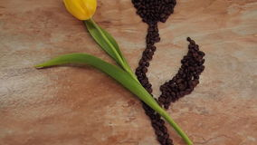 A flower of coffee beans together with fresh flowers. On the marble kitchen table there are yellow tulips with a coffee flower. stock video footage