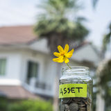 Flower and coins in glass jar with tag Stock Images
