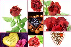 Flower Collage. Collage with different Photos of Roses Stock Photography