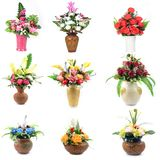Flower collection isolated Royalty Free Stock Photos
