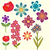 Flower collection. Wih different flowers Royalty Free Stock Images