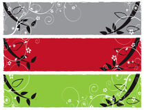 Flower Color Banner Illustration Royalty Free Stock Image