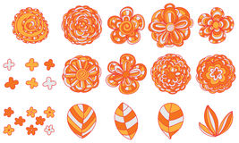 Flower color orange set Royalty Free Stock Photography