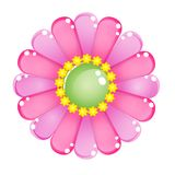 Flower color pink glossy jelly icon. Royalty Free Stock Images