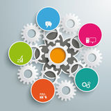 Flower Colored Infographic White Gears PiAd Stock Images