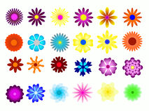 Flower colorful Royalty Free Stock Photos