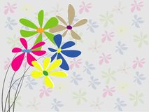 Flower colorful background Stock Photography