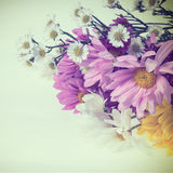 Flower colorful for background  retro filter effect Royalty Free Stock Photography