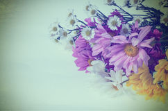 Flower colorful for background  retro filter effect Stock Photos