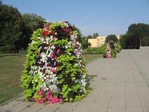 Flower column Royalty Free Stock Image