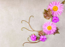 Flower composition Royalty Free Stock Photography