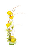 Flower composition Stock Photography