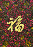 "Flower composition chinese characters. ""FU"",It means blessing Royalty Free Stock Images"