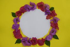 Flower composition. Frame made of fresh colorful flowers with white space for text on yellow background. Flat lay, top view, royalty free stock photos