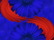 Flower composition. Royalty Free Stock Photo