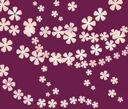Flower composition pattern Royalty Free Stock Photo