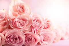 Flower composition with roses royalty free stock photos