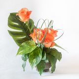 Flower Composition with Roses. Flower composition of roses with decorative leaves Stock Image