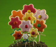 Flower cookie forest Royalty Free Stock Image