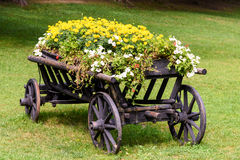 Flower Country Waggon On Grass Stock Photos
