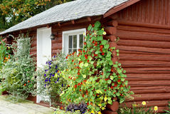 Flower Covered Log Cabin Stock Photos