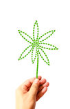 Flower create from green leaves in hand Royalty Free Stock Images