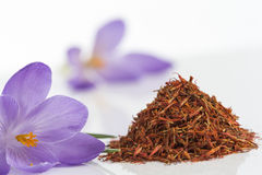 Flower crocus and dried saffron spice on white background. Stock Photos