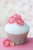 Flower cupcake Stock Photos