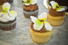 Flower Cupcakes Royalty Free Stock Images