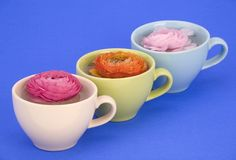 Flower Cups. Royalty Free Stock Photo