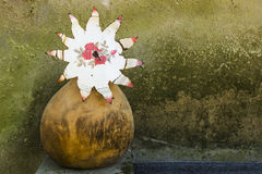 Flower cut out of tin in a wooden gourd Royalty Free Stock Photography