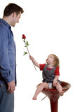 Flower for dad. Cute littel one year old baby girl sitting on stool giving a red rose to her dad on white background Royalty Free Stock Images
