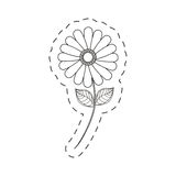 Flower daisy floral decoration cut line Stock Photography