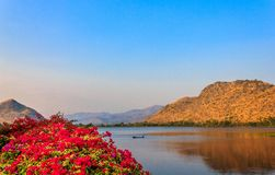 Flower and the dam. Beautiful flower above the dam in the evening, Kanchanaburi, Thailand Royalty Free Stock Photos
