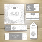 Flower dandelion cosmetics concept design. Corporate identity. Royalty Free Stock Photo