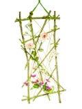 Flower Deco Stock Photos