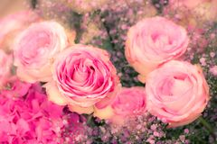 Flower deco with pink roses Royalty Free Stock Photography