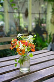 Flower decorate on the table. Orange tone flower in the glass vase on the wood table in the garden Royalty Free Stock Image