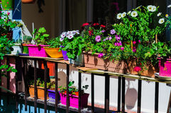 Flower Decorated Balcony Stock Photo