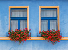 Flower decorated windows. Stock Photo