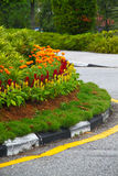 Flower decoration along road curb. Concept of city greenery Stock Photography