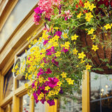 Flower decoration in English pub on street of London, UK Stock Photography