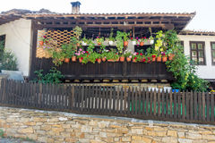 Flower decoration old house in Lovech, Bulgaria royalty free stock images