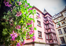 Flower decoration in  Strasbourg Royalty Free Stock Image