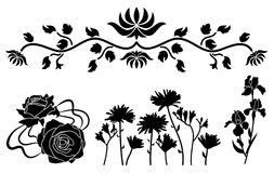 Flower decorative ornament Royalty Free Stock Images