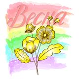 Flower decoratively romantically abstraction vector illustration. On multicolor pastel delicate background Stock Photography