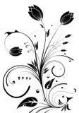 Flower design vector illustration
